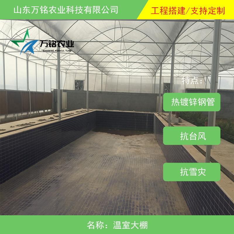山东温室工程建设 温室工程大棚建设价格 温室工程大棚价格