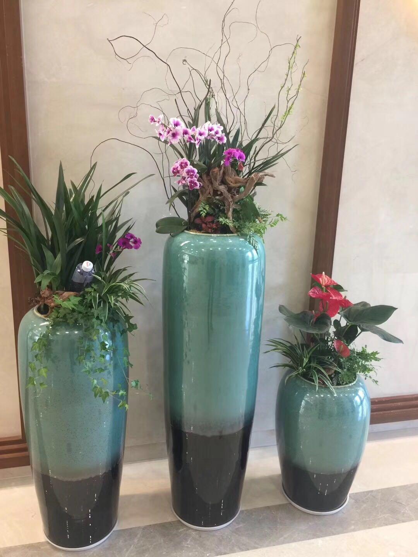 深圳南山区植物租摆价格-南山植物租摆销售-  南山区植物租摆