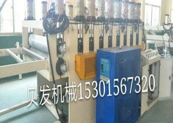 PVC结皮发泡板设备图片