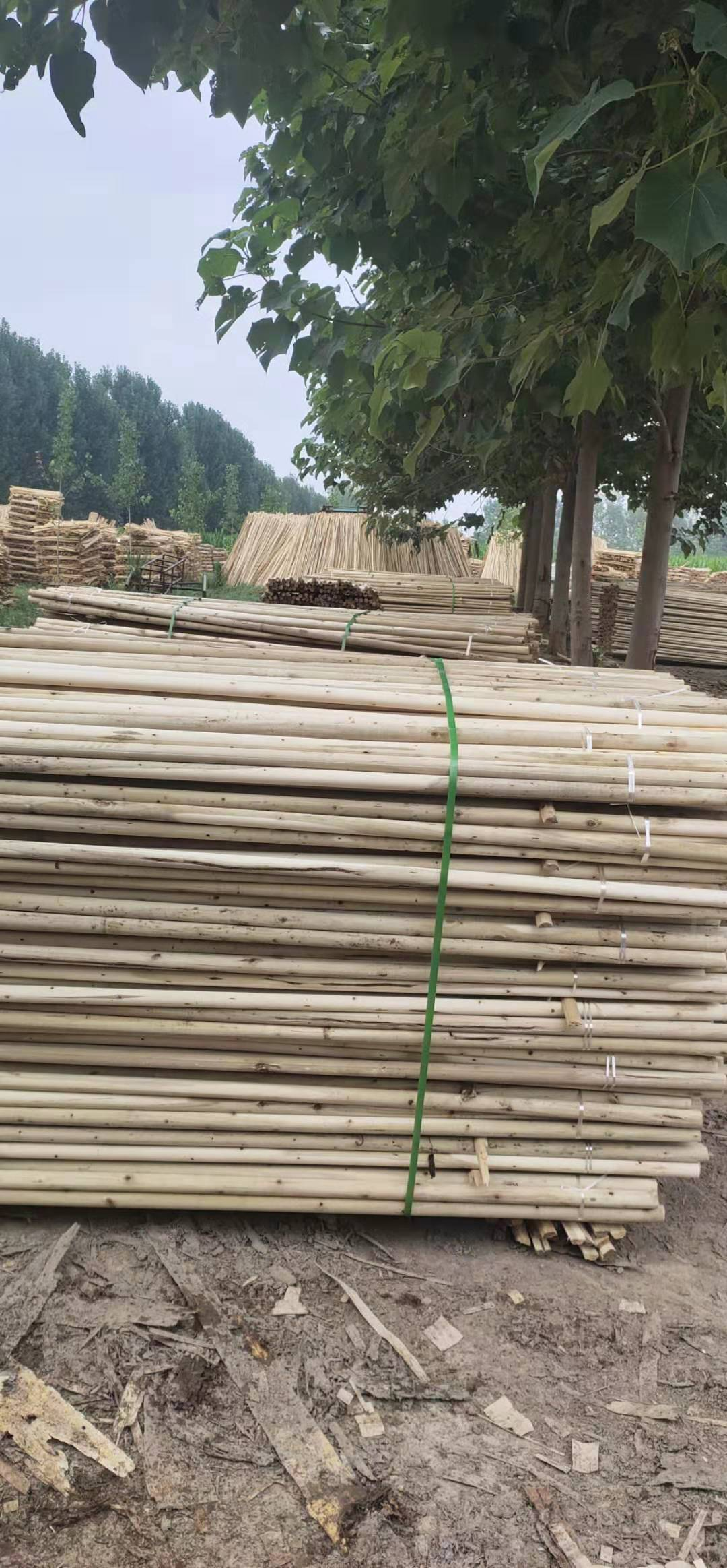 3.5厘米杨木绿化杆供应商3.5厘米杨木绿化杆/生产厂家/批发 厂家直销杨木绿化杆