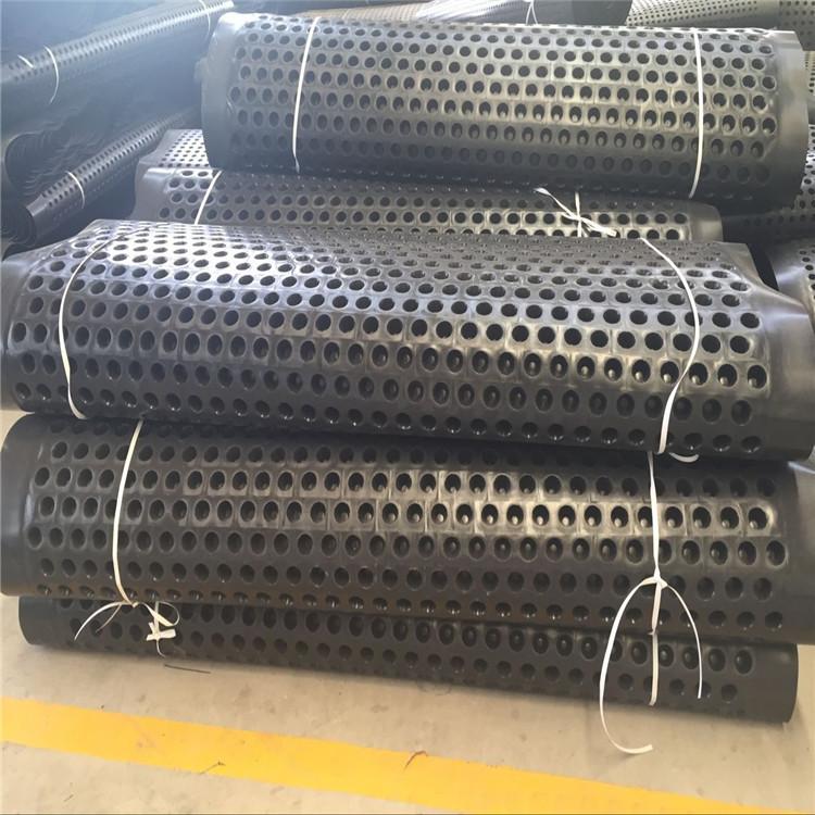 山东塑料排水板    厂家直销塑料排水板报价电话 塑料排水板
