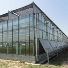 智能玻璃温室厂_玻璃温室价格_搭建玻璃温室大棚要多少钱批发