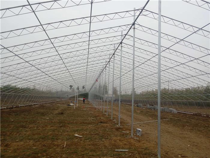 日光温室使用方法详情 日光温室大棚建设权威厂家