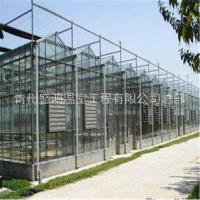 便宜的玻璃温室产品的基本常识 江苏便宜的玻璃温室产品的基本常识