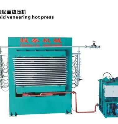 贴面热压机图片/贴面热压机样板图 (3)