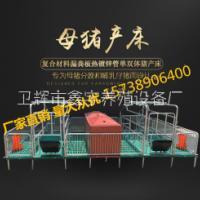 养猪分娩保育养猪分娩保育床 双体母猪产床设备 床 双体母猪产床设备