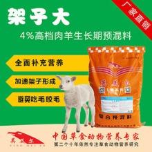 肉羊快速育肥方案-羊饲料厂家