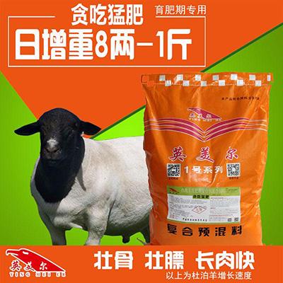 羊喂什么长的快长得胖-厂家直销
