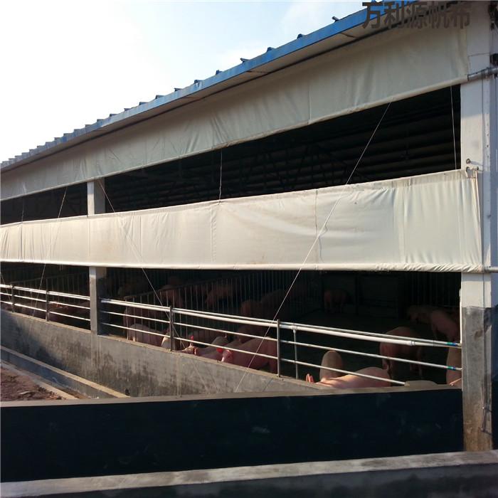 养殖牛场卷帘布批发价格-畜牧牛舍窗帘布厂家-加厚牛棚防风布在哪有卖