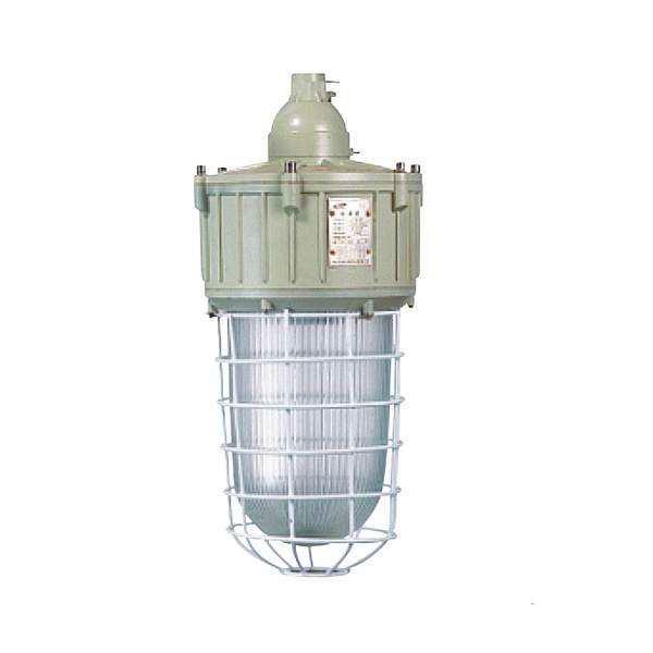 BAD82系列隔爆型防爆灯-隔爆型防爆灯-隔爆型防爆灯厂家-隔爆型防爆灯价格-上海新黎明防爆电器有限公司