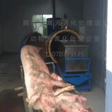养殖场湿化机 养殖场湿化机 无害化处理设备 畜禽湿化机 无害化处理设备图片