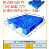 生产厂家直销天津市西青区津南区塑料托盘与租赁,实力厂家,一手货源。