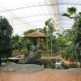 展览温室 生态餐厅 玻璃温室  智能温室  科研温室