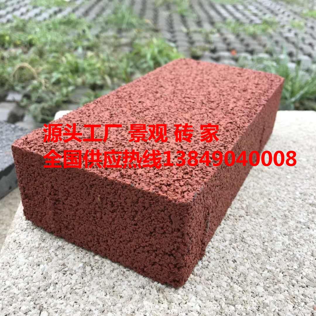 河南透水砖 路面砖 通体彩砖 广场砖 通体透水砖