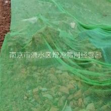两针防尘网绿化网南京厂家批发