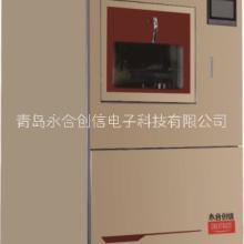 全自动洗瓶机CTLW-120P批发