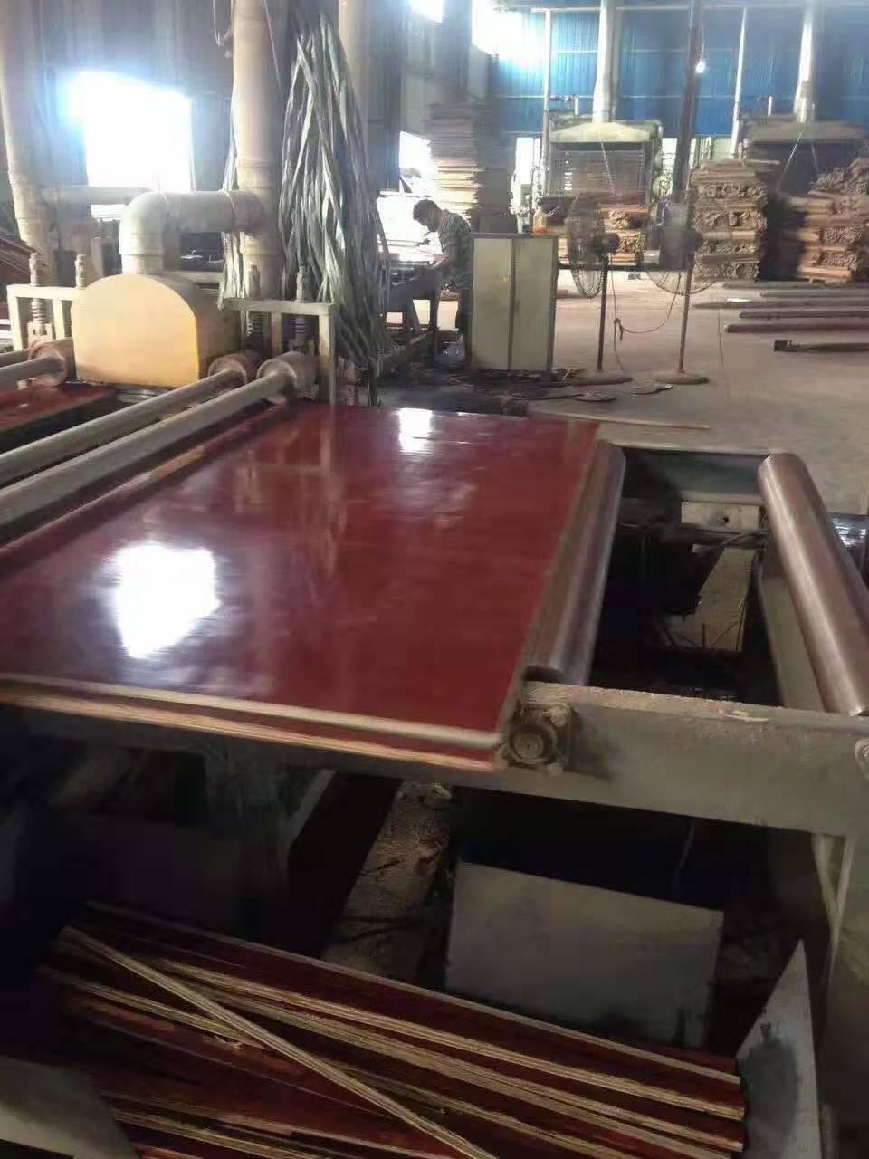 钦州市建筑工程塑料模板价格 建筑工程塑料模板批发 塑料模板