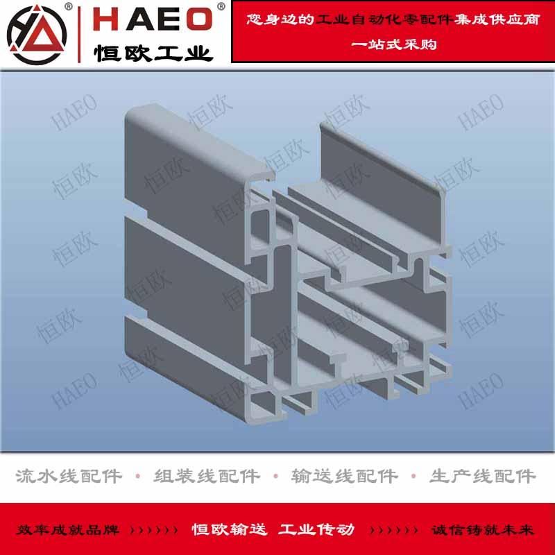 倍速链铝型材轨道厂家直销批发 价格优惠 苏州恒欧工业自动化有限公司