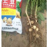 马铃薯专用菌剂厂家、批发、报价【河北芭农肥业有限公司】