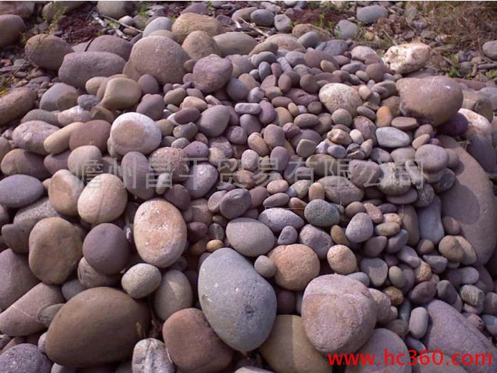 珊瑚石 生物石 海母石 水族造景石