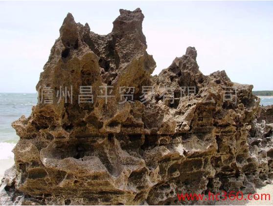 供应风景石,假山石,盆景石 景观石 供应景观石