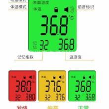 额温枪显示屏红外测温仪显示屏LCD显示屏 LCD额温枪显示屏批发
