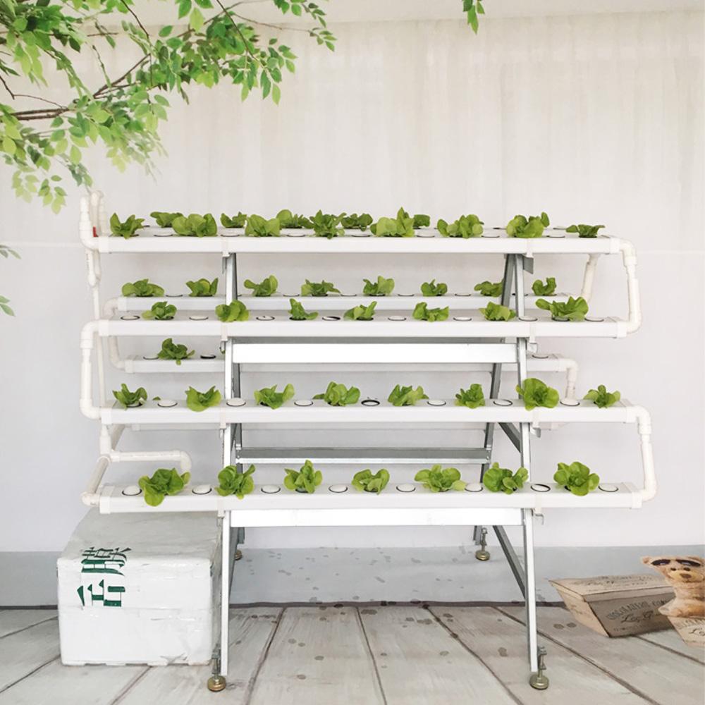 幸运买家无土栽培设备管道花卉阳台室外120棵蔬菜金属水培种植架 无土栽培种植架厂家