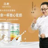 供應新疆駱駝奶粉正宗新疆駱駝奶粉