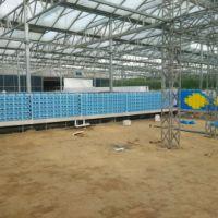 玻璃温室工程价格 玻璃温室工程供应商 玻璃温室工程厂家
