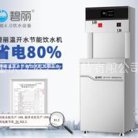 碧丽直饮水工厂净水器2Q5A-RO办公室商用饮水机