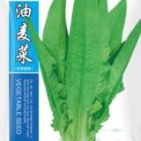 河北永年 菜乡油麦菜基地,抗病抗虫,耐热耐寒,蔬菜市场认可品种,种子生产企业育种批发品种 蔬菜种子、