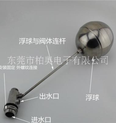 不锈钢304浮球阀图片/不锈钢304浮球阀样板图 (2)