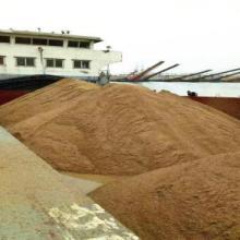 大量供應天然黃沙 路面施工河沙 水洗河沙 產地直銷 河砂圖片