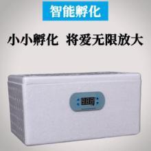 RQ-20型仿生水床孵化器-水床孵化器-鸡蛋孵化器价格图片