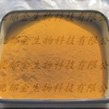 姜黄粉 姜黄色素 天然植物色素 工厂直销图片