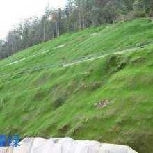 矿山覆绿绿化 山坡绿叶网 矿山覆绿厂家批发 矿山覆绿批发图片