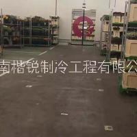 廣西水果冷庫安裝報價_廣西水果冷庫價格_水果冷庫供應商
